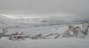 Denali looking west
